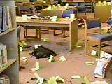 Damages to the school library